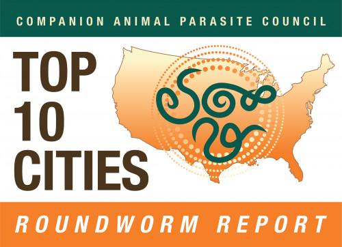 CAPC Top 10 Cities Report
