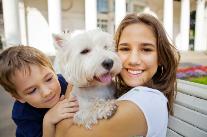 Ten Tips To Protect Your Family Pets