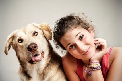 home to home pet adoption